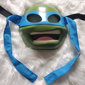 Ninja Turtle Mask and Shell Costume